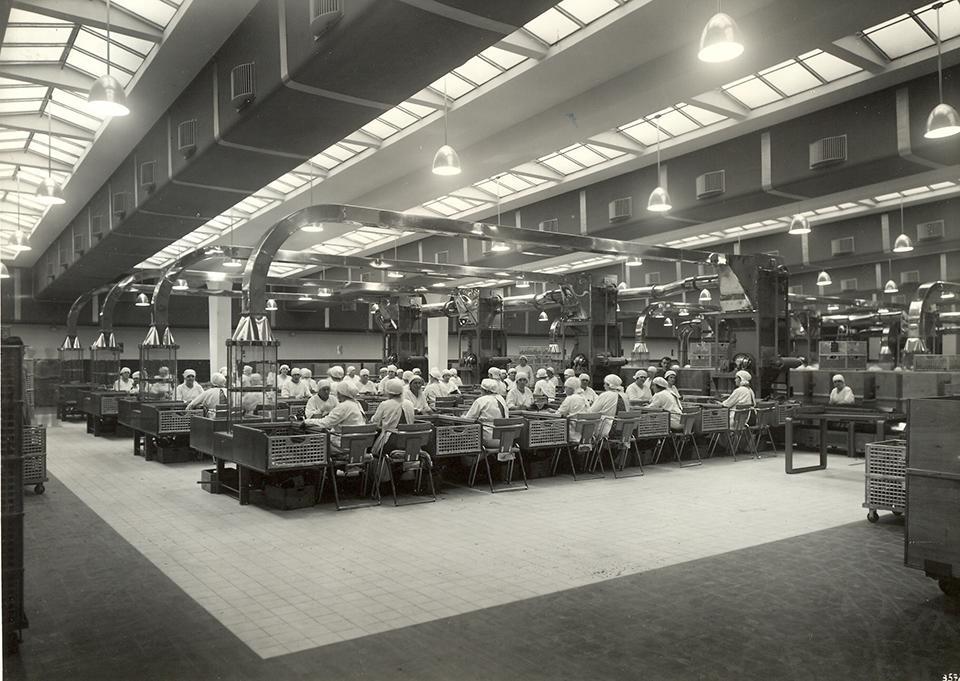 Tabakproduktion von 1850 bis 2009 an einem Standort in der Tabakfabrik Linz