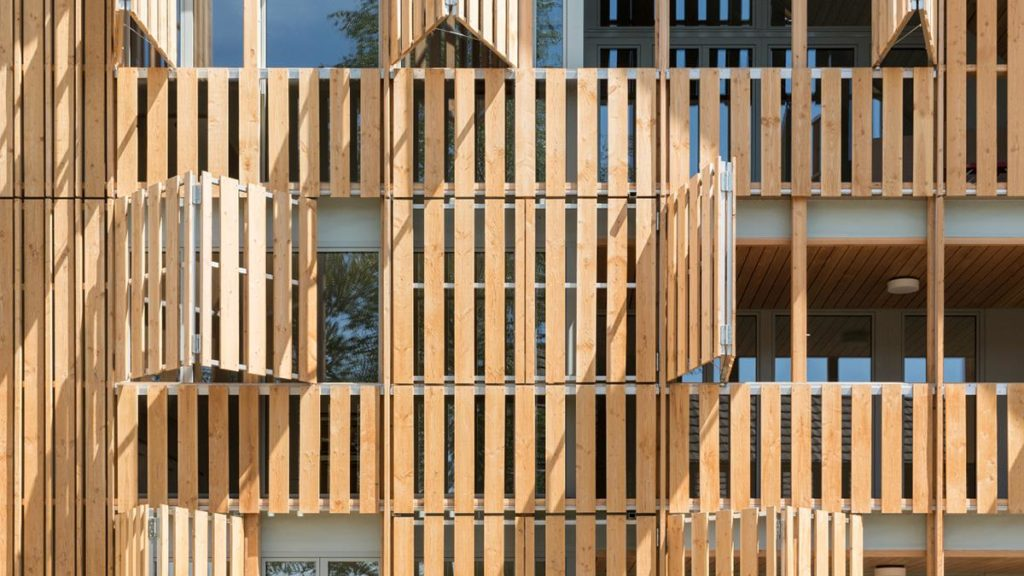 Lebendige Holzfassade des Mehrfamilienhauses Im Amt. (Foto: Beat Bühler)