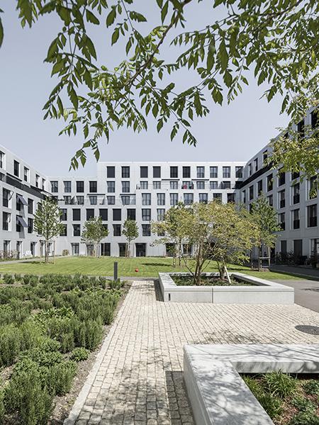 Siedlung sue&til: Moderne Holzbau-Stadt in der Stadt. (Foto: Beat Bühler)