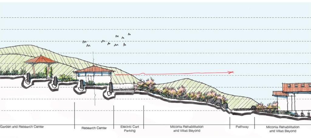 Wichtige Landschaftsarchitektur: Die ursprüngliche Vegetation des Hügels, auf dem das Resort entsteht, wird von eingeschleppten Arten bedroht. Spezielle Neubepflanzung soll das sensible Öko-System regenerieren. (Grafik: Hitesh Mehta)