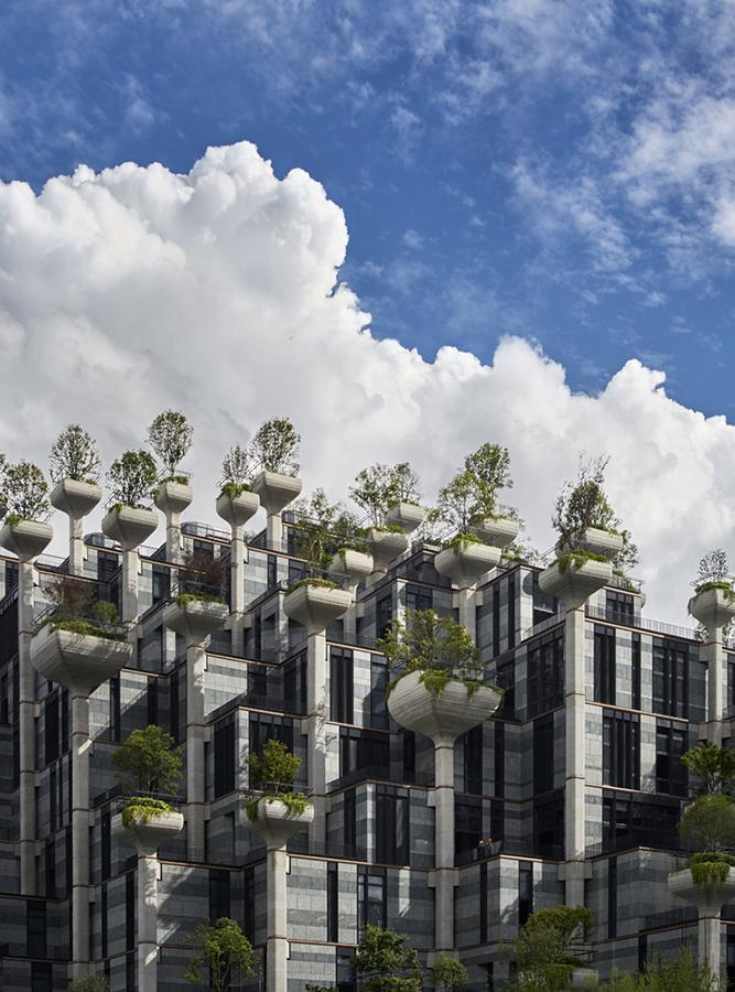 Trees that grow heavenwards from the facade... (Photo: Qingyan Zhu)