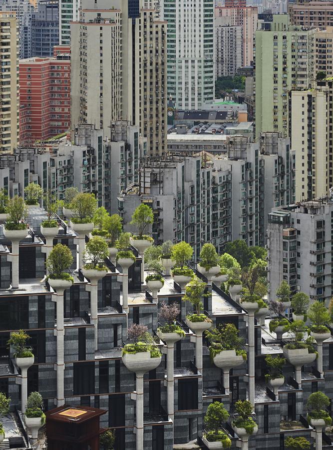 ..sollen eine Oase in die dicht besiedelte Zone setzen. (Foto: Qingyan Zhu)