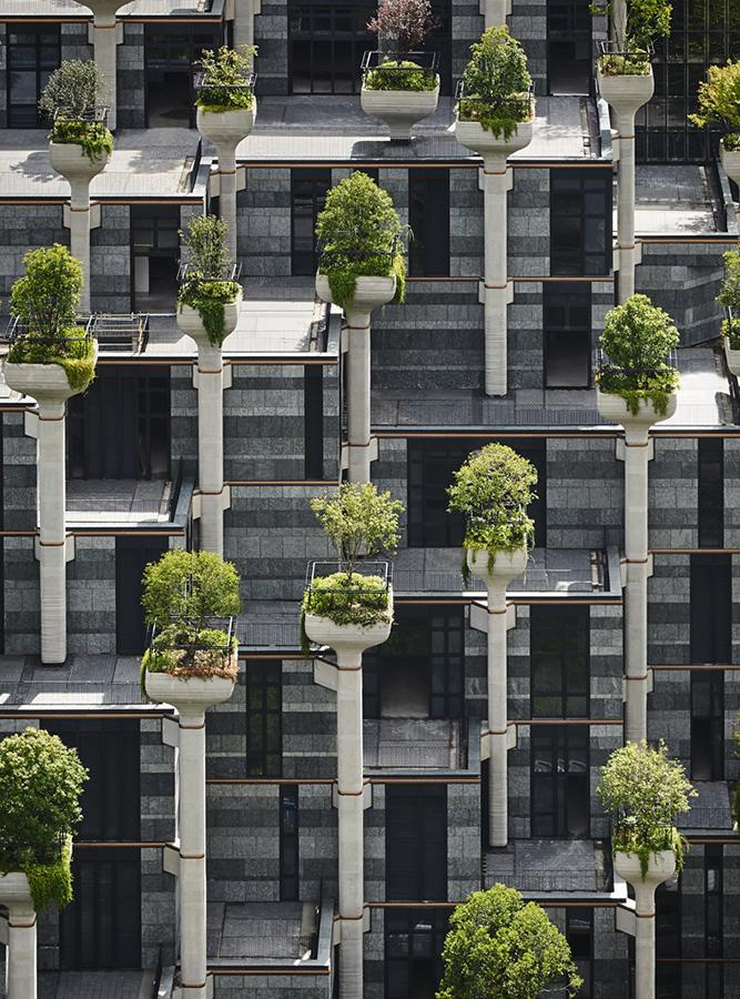 Hundreds of pillars were designed as plant pots in which trees are rooted.(Photo: Qingyan Zhu)