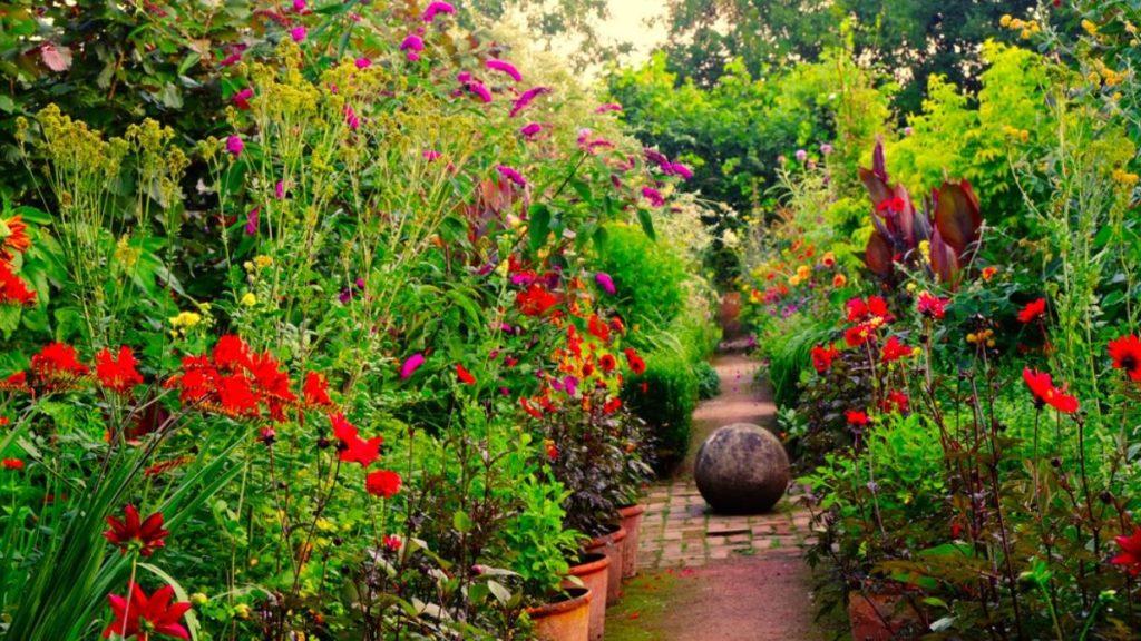 Must-see Filme: Garten-Nachhilfe gibt Monty Don