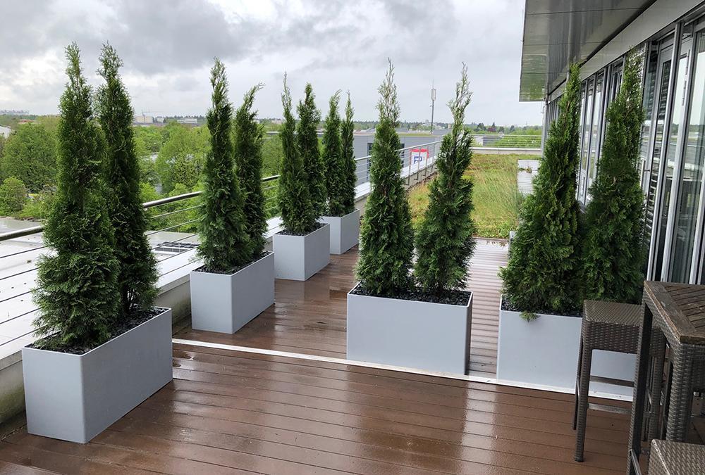Grüne Vielfalt: Auch das bauliche Umfeld spielt keine Rolle, wenn mit dem innovativen System bepflanzt. (Bild: GKR)
