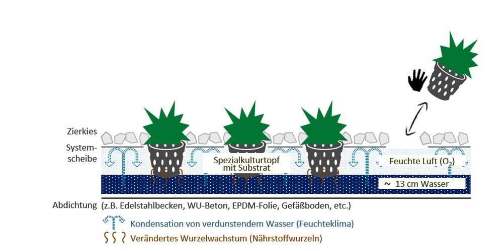 """Baubegrünung, leicht gemacht: """"Hydro Profi Line""""-Begrünung: Leichter und wartungsarm. (Bild: GKR)"""