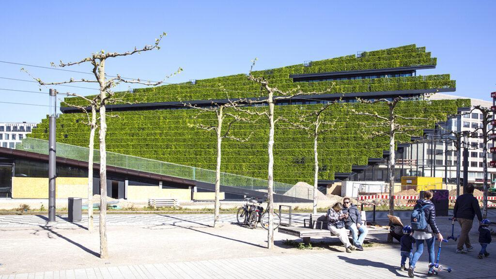 """Grün, grüner, """"Kö-Bogen 2""""! Schon vorm Bau-Finale ein Anziehungspunkt: Die 30.000 Hainbuchen des Neubaus.(Bild: CENTRUM Gruppe)"""
