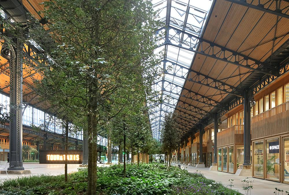 Gare Maritime restored with timber and green space