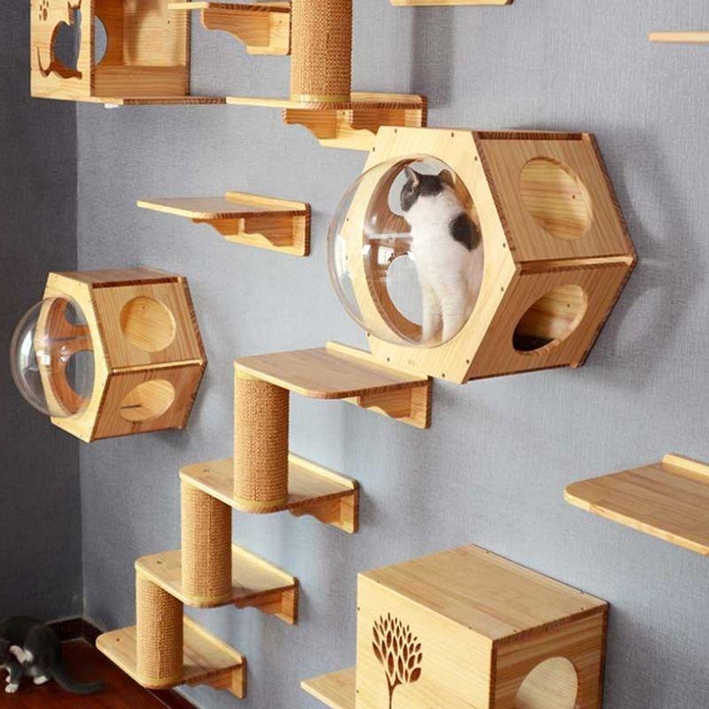 Wandkletterteile für die Katzen