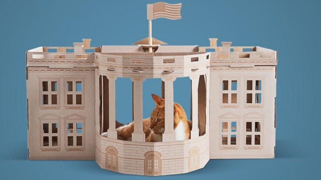 Weisses Haus für die Katze