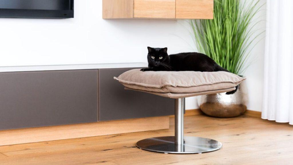 Stylishes Katzenbett