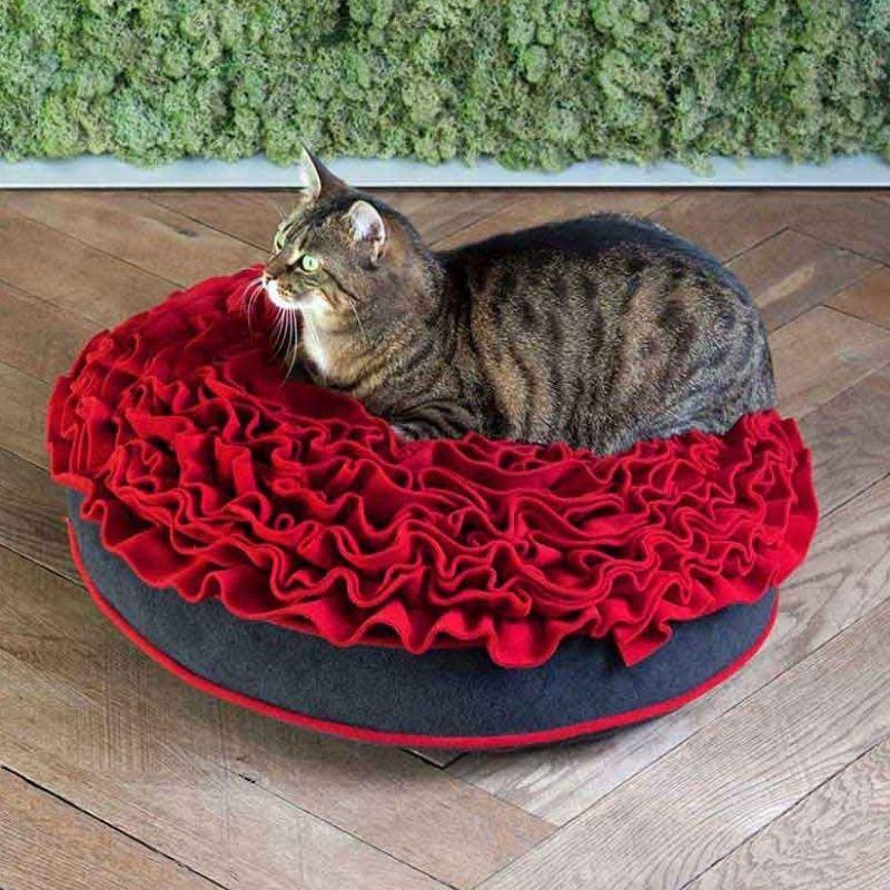 Katze liegt wie auf Rosen gebettet