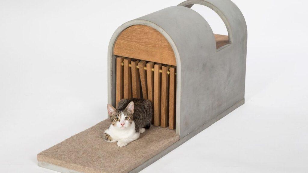 Schutz für Streunerkatzen, von Designern entworfen