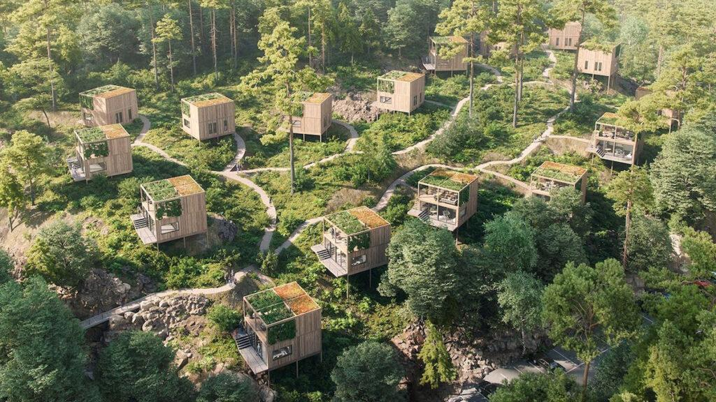 Zukunft, auf Holz gebaut