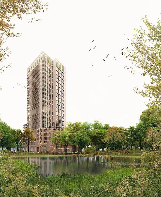 """Ein """"Wohn-Wald"""" wächst in Groningen (Bild: Proloog)"""