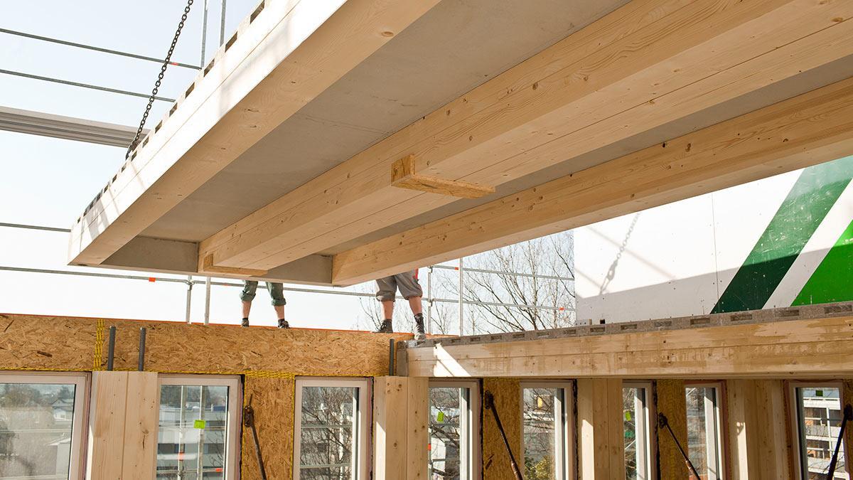 Holz-Hybrid-System, CREE