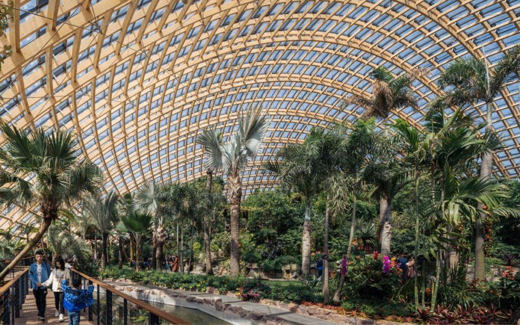 Gewächshaus mi tropischen Pflanzen