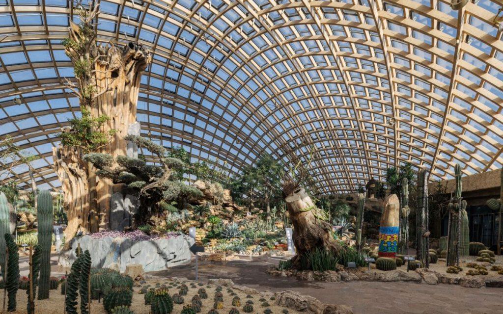 eine Kuppel beheimatet Wüstenpflanzen