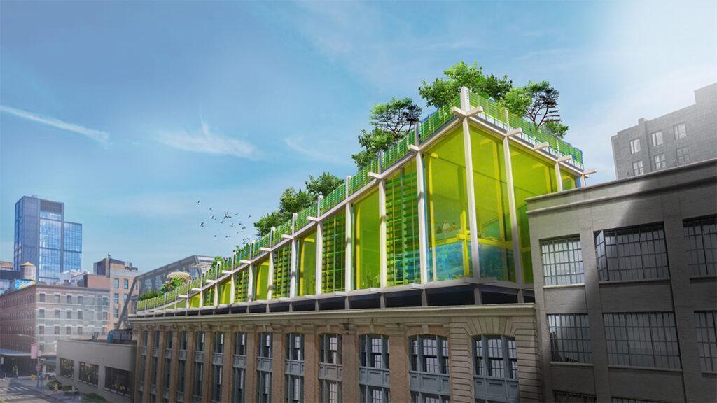 """Ein Biotop über Manhattan. Durchdachte Lösung: Der """"grüne Hügel"""" auf dem neuen """"We the Planet""""-Firmensitz. (Bild: 3deluxe)"""