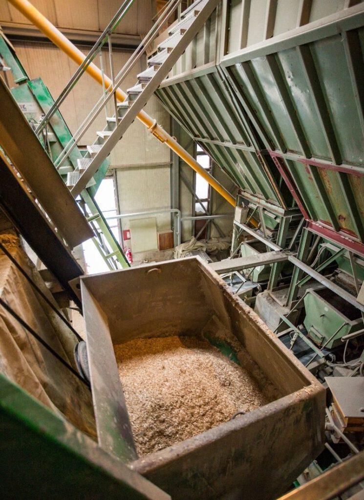 Bauen mit Hanf: Hanfziegelproduktion bei Schönthaler