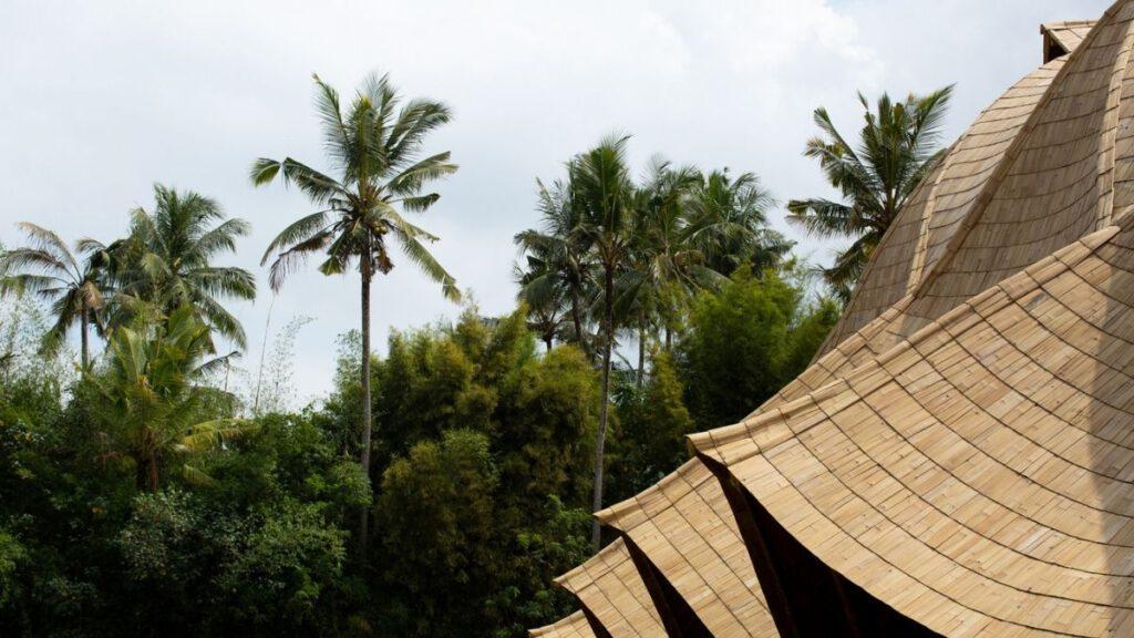 Bauen mit Bambus: Spezielle Behandlungsmethoden verleihen Bambus längere Nutzungsdauer