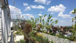 BiotopeCity, Open House Wien